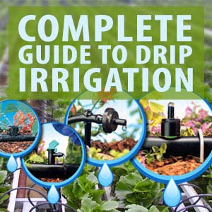 Drip Irrigation FAQs