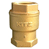 image of the brass spring check valves