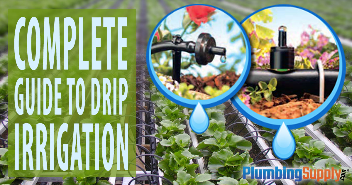 Complete Guide to Drip Irrigation Systems