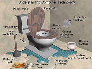 Toilet terminology funny graphic