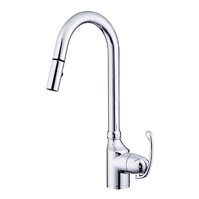 Danze Anu collection single handle kitchen faucet with pulldown spout - new style