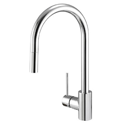 Danze Citron collection single handle kitchen faucet