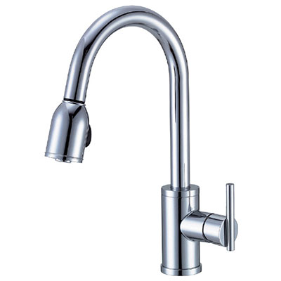 Gentil Danze Parma Collection Single Handle Kitchen Faucet With Pulldown Spout