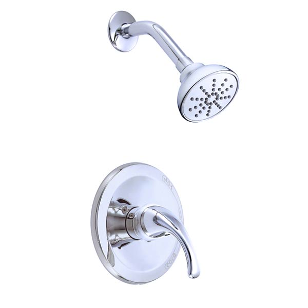 Danze Melrose shower with single function shower head