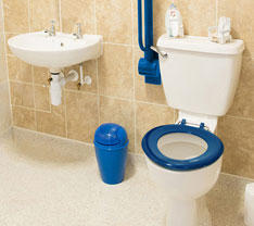 Toilet with fold-up transfer bar, colored seat, and bright trash can