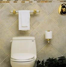 example of the ten inch horizontal grab bar used as toilet paper holer