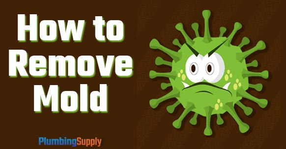 Diy How To Remove Mold