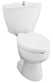 Jacob delafon toilet