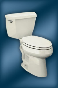 Highline K-11450 & K-3427-K Toilet