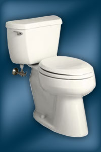 Wellworth K-3481-U Toilet