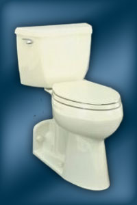 Wellworth K-4519 Toilet