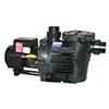 Non-submersible pond pump