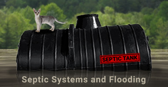 How To Manage Your Septic After A Flood