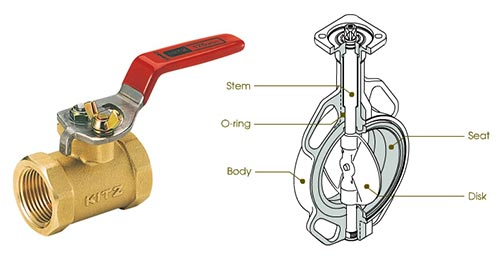 Butterfly valve and cross-section