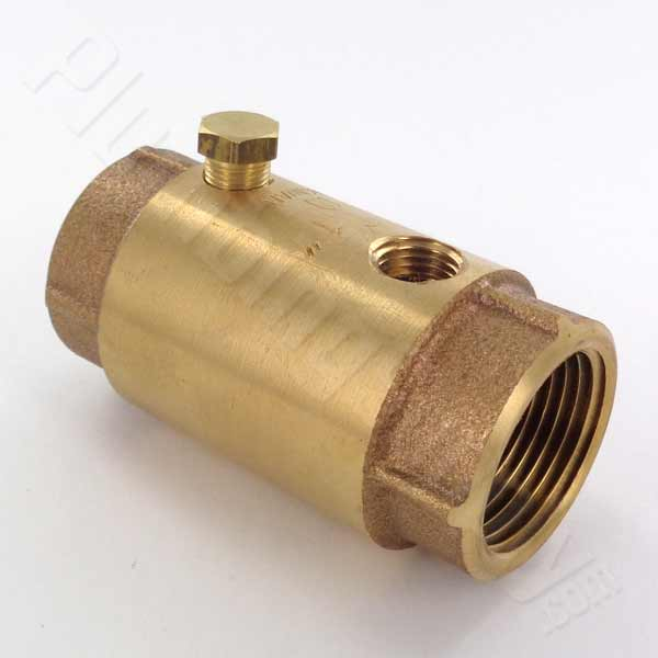1-inch double tapped check valve for wells
